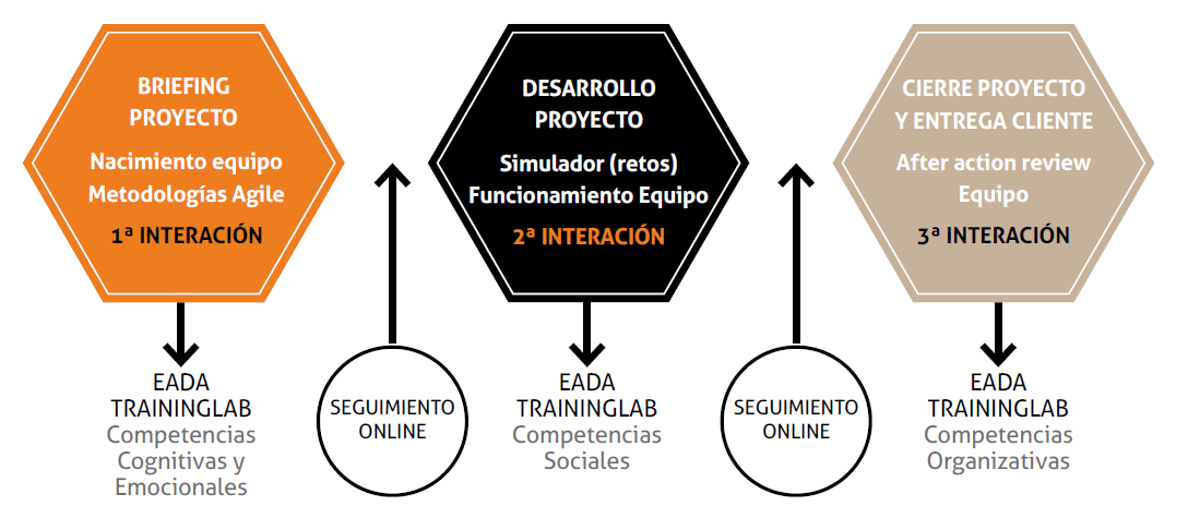 Estructura del programa Accelerating STEM Talent